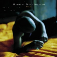 Meshell Ndegeocello Wasted Time