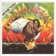 Peter Tosh Stop That Train (2002 Remastered Version)