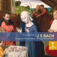 Philippe Herreweghe Christmas Oratorio BWV248, Cantata 1: Am ersten Weihnachtsfeiertage: Recitative: Alto: Nun wird mein liebster Bräutigam
