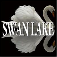 Alexander Lazarev Swan Lake Op.20 : III Dance of the Swans