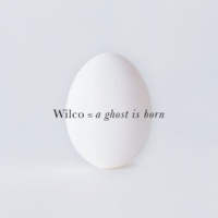 Wilco The late greats (live)