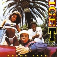 Ice T I Love Ladies