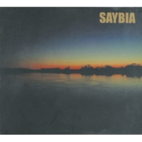 Saybia The Second You Sleep (Live In Aalborg November 2000)