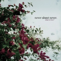 Never Shout Never What Is Love?