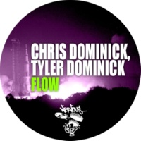 Chris Dominick, Tyler Dominick Flow (Original Mix)