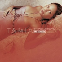 Tamia Officially Missing You (Felix's Hechtic Dub Mix)
