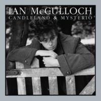 Ian Mcculloch In My Head