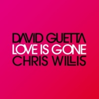 David Guetta & Chris Willis Love is Gone (Fred Riester & Joachim Garraud Radio Edit Rmx)