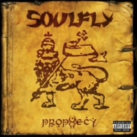 Soulfly In The Meantime