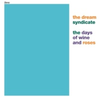 The Dream Syndicate Definitely Clean