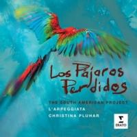 Christina Pluhar/L'Arpeggiata/Boris Schmidt/David Mayoral/Raul Orellana/Raquel Andueza/Jesus Fernandez Baena Besame mucho (Bolero)