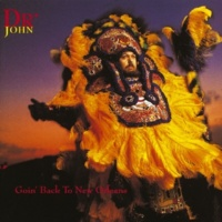 Dr. John Since I Fell For You