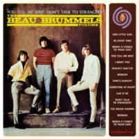 The Beau Brummels When It Comes To Your Love (Instrumental)
