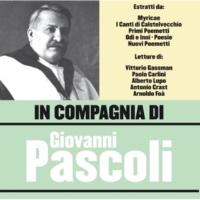 Vittorio Gassman L'aquilone