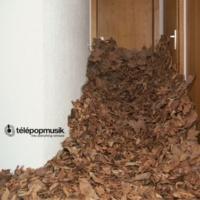 Telepopmusik - Deborah Anderson - Deborah Anderson - Deborah Anderson Into Everything (The MFA Dub Club Remix)