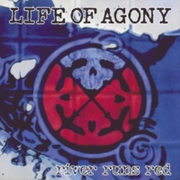 Life Of Agony Through And Through