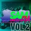 Various Artists SAMple Disco Loops 2