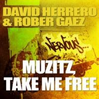 David Herrero & Rober Gaez Musitz (Original Mix)