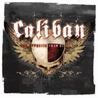 Caliban Salvation