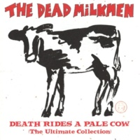 The Dead Milkmen If You Love Someone Set Them On Fire