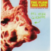 The Flaming Lips This Here Giraffe