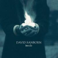 David Sanborn Daydreaming