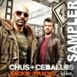 Chus & Ceballos Back On Tracks SAMPLER