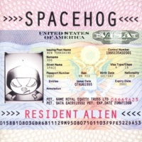 Spacehog In the Meantime