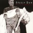 Steely Dan Alive In America