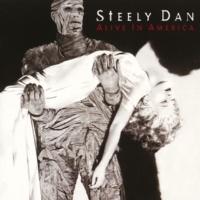 Steely Dan Reelin' In The Years (Live)