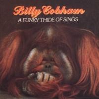 Billy Cobham Some Skunk Funk