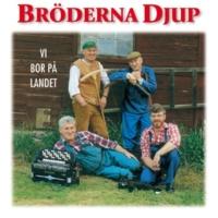 Bröderna Djup Råskevärsrock