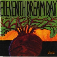 Eleventh Dream Day Love To Hate To Love