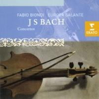 Sergio Ciomei/Europa Galante/Fabio Biondi Concerto for Harpsichord in D major BWV 1054 (from Violin Concero BWV 1042): I. [Allegro]