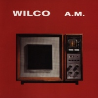 Wilco That's Not The Issue