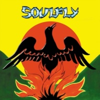 Soulfly In Memory Of...