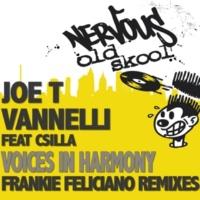 Joe T Vannelli Voices In Harmony feat. Csilla (Frankie Feliciano Version 4)