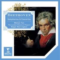 Melvyn Tan/London Classical Players/Sir Roger Norrington Piano Concerto No. 4 in G Major, Op. 58: II. Andante con moto