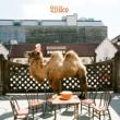 Wilco Wilco [the album]