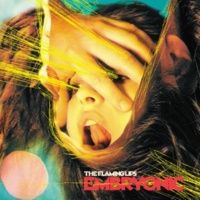 The Flaming Lips Anything You Say Now, I Believe You (Non-Album Track)