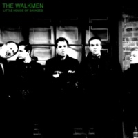 The Walkmen Fly Into The Mystery