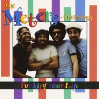 The Meters They All Ask'd For You