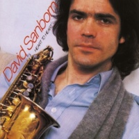 "David Sanborn Theme From ""Love Is Not Enough"""