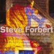Steve Forbert Rocking Horse Head