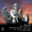 Rene Jacobs Bach Cantatas
