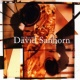 DAVID SANBORN Over and Over (Edit)