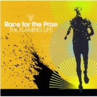 The Flaming Lips Thirty-Five Thousand Feet Of Despair (Stereo Remix)