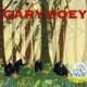 Gary Hoey Animal Instinct