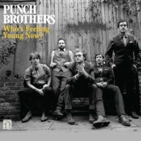 Punch Brothers Hundred Dollars