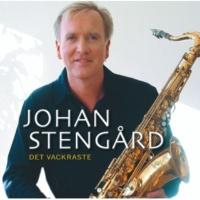 Johan Stengård Fjäriln vingad syns på Haga